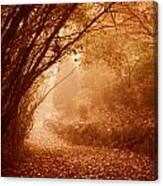 Yellow Leaf Road Canvas Print