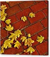 Yellow Leaves On Red Brick Canvas Print
