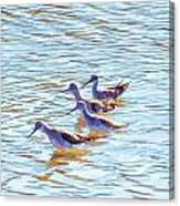 Yellow Legs Quartet Photo Art Canvas Print