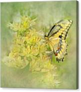 Yellow On Yellow  Canvas Print