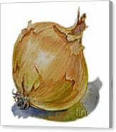 Yellow Onion Canvas Print