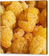Yellow Raspberry Abstract Canvas Print