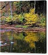 Yellow Reflections Canvas Print