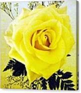 Yellow Rose 2 Canvas Print
