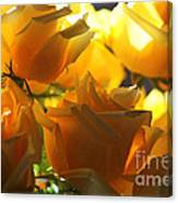 Yellow Roses And Light Canvas Print