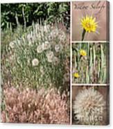 Yellow Salsify Collage Canvas Print