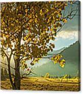 Yellow School House Canvas Print