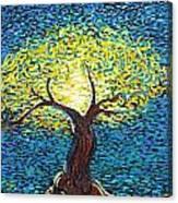 Yellow Squiggle Tree Canvas Print