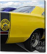 Yellow Superbee  Canvas Print