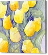 Yellow Tulips 1 Canvas Print