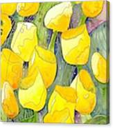 Yellow Tulips 2 Canvas Print