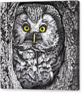 Yelloweyes - The Owl Edition Canvas Print