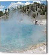 Yellowstone 2 Canvas Print