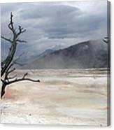 Yellowstone 21 Canvas Print
