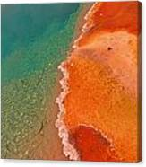 Yellowstone Hotsprings Detail Three Canvas Print