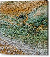 Yellowstone Living Thermometer Abstract Canvas Print