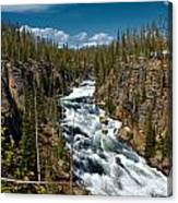 Yellowstone National Park Lewis River Canvas Print