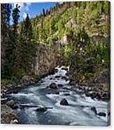 Yellowstone National Park Waterfall Canvas Print