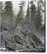 Yellowstone - The Rock Tree Canvas Print