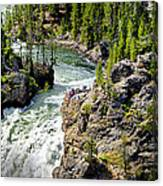 Yellowstone - Upper Falls Canvas Print