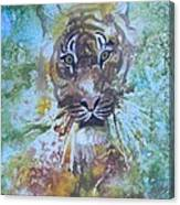 Yipes Canvas Print