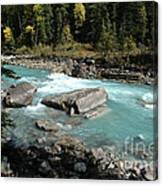Yoho River Canvas Print