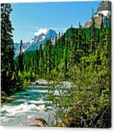 Yoho River In Yoho Np-bc Canvas Print