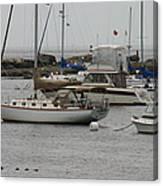 York Harbor Maine Canvas Print