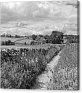 Yorkshire Dales Uk Canvas Print