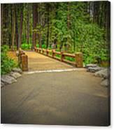 Yosemite Falls Trail Canvas Print