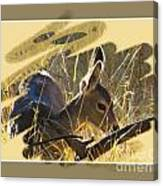 Yosemite Np Wildlife - Doe Canvas Print