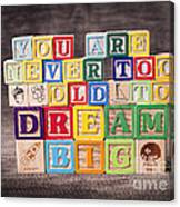 You Are Never Too Old To Dream Big Canvas Print