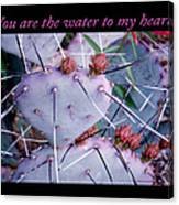 You Are The Water For My Heart 7 Canvas Print