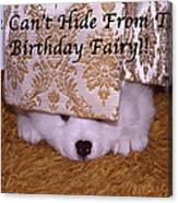You Can't Hide Birthday Card Canvas Print
