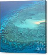 You Found Me Great Barrier Reef Australia  Canvas Print