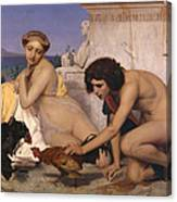 Young Greeks Attending A Cock Fight Canvas Print