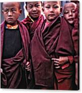 Young Monks II Canvas Print