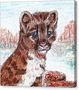Young Mountain Lion Canvas Print