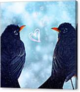 Young Robins In Love Canvas Print