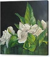 Your Mother's Gardenias Canvas Print