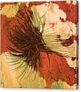 Yucca Abstract Warm Canvas Print