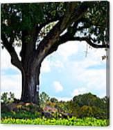 Yum Yum Tree Canvas Print