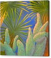 Yuma Conservation Garden Canvas Print