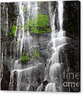 Yungas Waterfall Detail Canvas Print