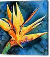 Yupo Paradise Canvas Print