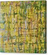 Z3 - She Canvas Print