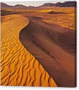 Zagora Desert In Morocco Canvas Print