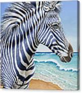 Zebra By The Sea Canvas Print