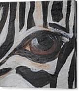 Zebra Eye Canvas Print