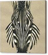 Zebra Front Canvas Print